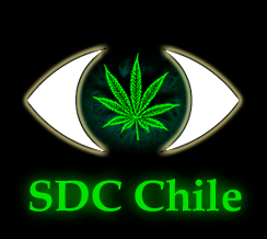 semillas de cannabis chile
